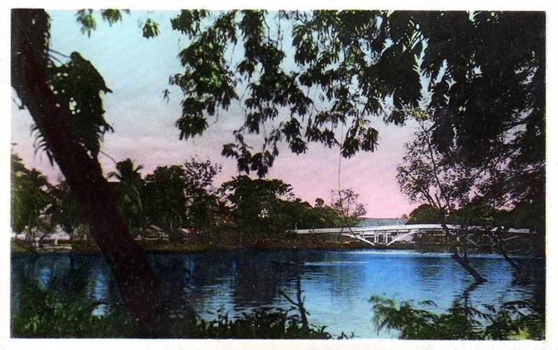 Do một đầu cầu nằm ở Thảo Cầm Viên nên cầu còn được người dân gọi là Cầu sở thú. Chức năng của cầu chủ yếu là để phục vụ người đi bộ. Ảnh tư liệu.