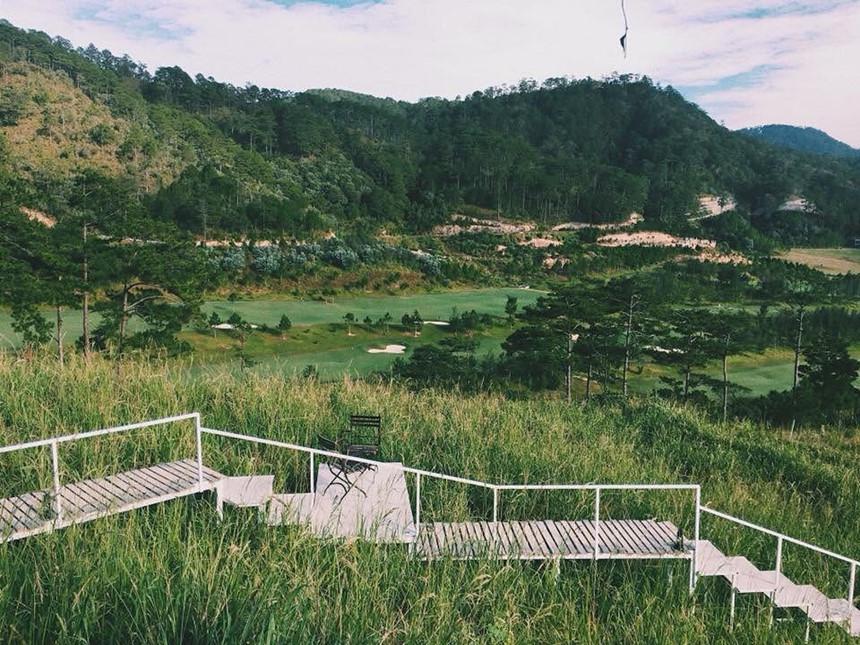 """Hai khu được nối với nhau bởi một cầu thang gỗ dài màu trắng. Chiếc cầu thang này đã trở thành địa điểm chụp ảnh check-in """"được lòng""""  giới trẻ thời gian qua. Ảnh: The Wilder-nest."""