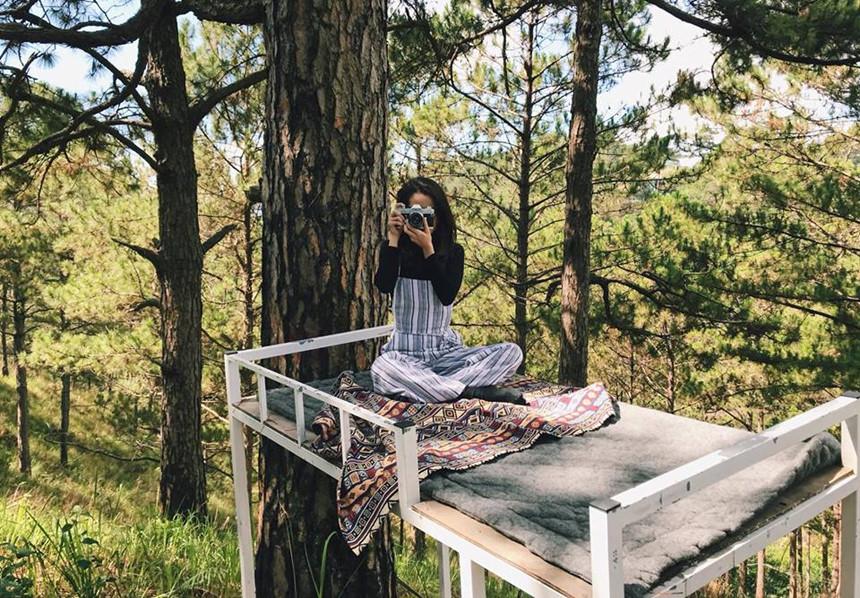 """Ban ngày không biết làm gì? Hãy ra khu vực rừng thông gần đó, leo lên những chiếc giường tầng và chụp vài bức ảnh """"sống ảo"""" nhé. Trông bạn sẽ như đang ở Chiangmai hoặc nơi nào đó với đồi núi trùng điệp đấy. Ảnh: Tho Trauma"""