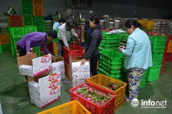 Nhiều hoạt động quảng bá trái cây Việt tại Lễ hội trái cây Nam bộ 2018.