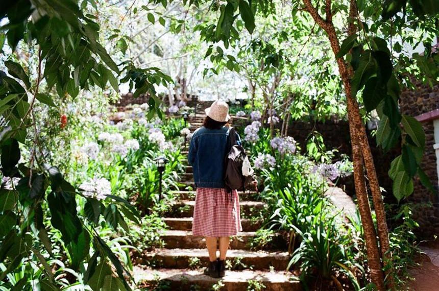 4. Moonrise Garden Dalat: Đúng như tên gọi, homestay này là ngôi nhà nằm giữa một khung cảnh thiên nhiên xinh xắn và thư giãn. Chỗ này vừa là homestay, vừa là cà phê, bạn hoàn toàn có thể dành cả kỳ nghỉ ở đây mà chẳng cần đi đâu cả. Ảnh: Instagram nhacogacmai.