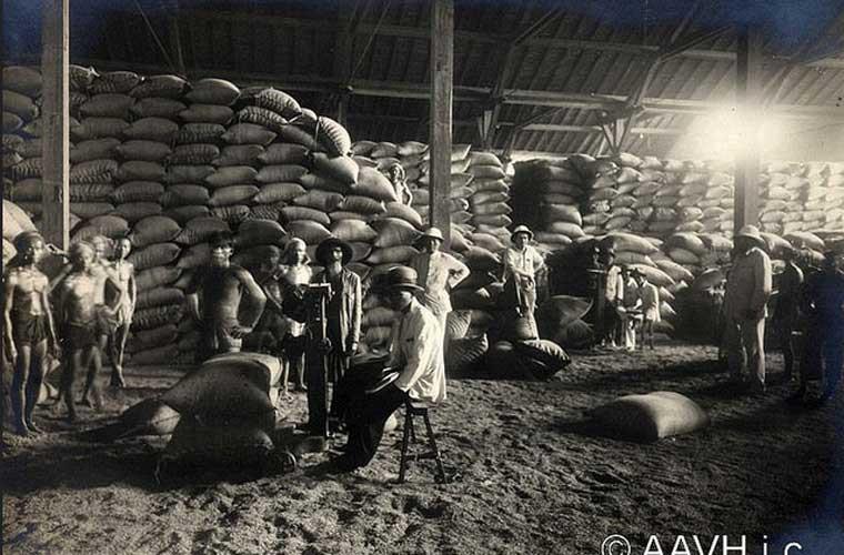 Các nhân công khuân vác gạo tại một xưởng gạo ở Chợ Lớn.