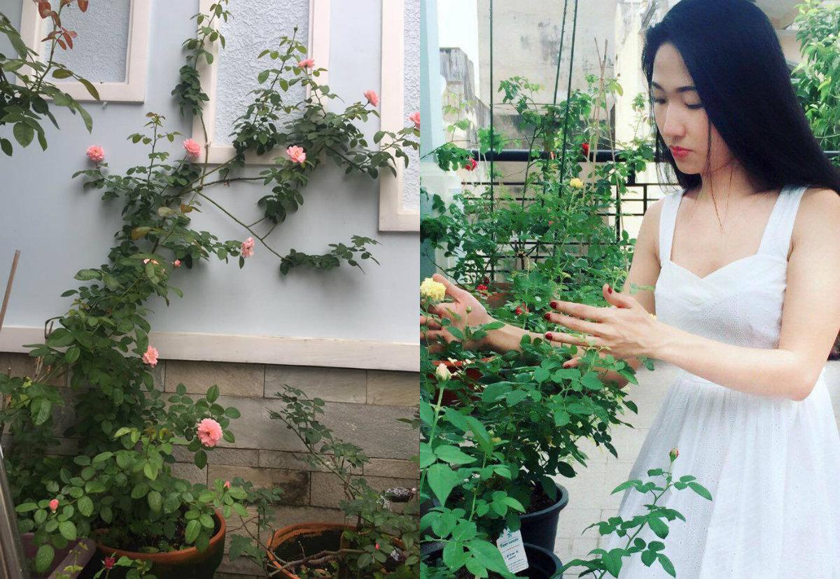 Từ khi chăm hồng, chị cảm thấy yêu đời hơn và thích thú hơn khi ngắm nhìn những bông hồng hé nụ, nở bông từng ngày. Bởi vậy, dù cuộc sống có mệt mỏi đến mấy nhưng khi được ngắm nhìn vườn hoa chị cảm thấy thư giãn , mọi áp lực công việc đều tan biến.