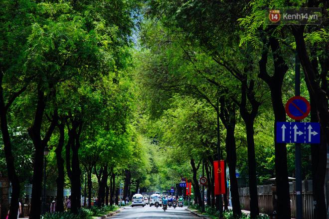 Vòng mè xanh trên đường Lý Tự Trọng.