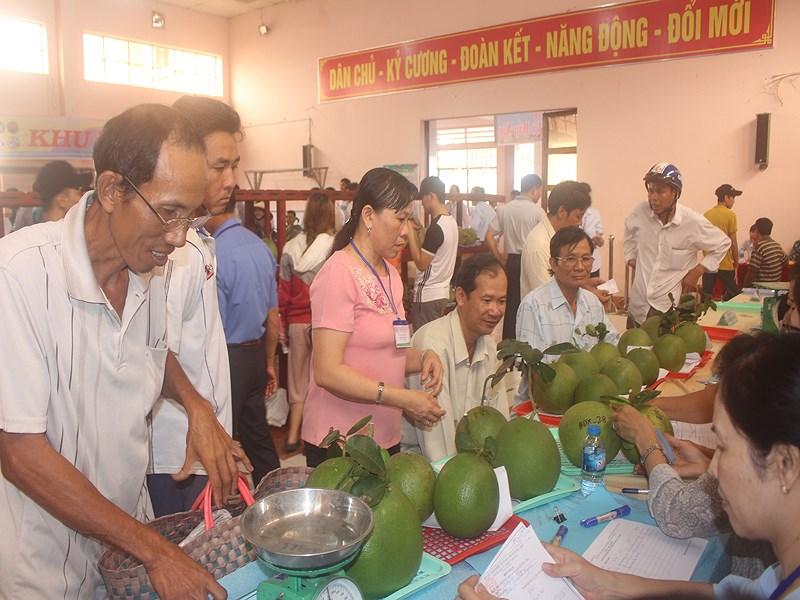 Nông dân hào hứng đem trái ngon đến lễ hội dự thi sản phẩm trái ngon