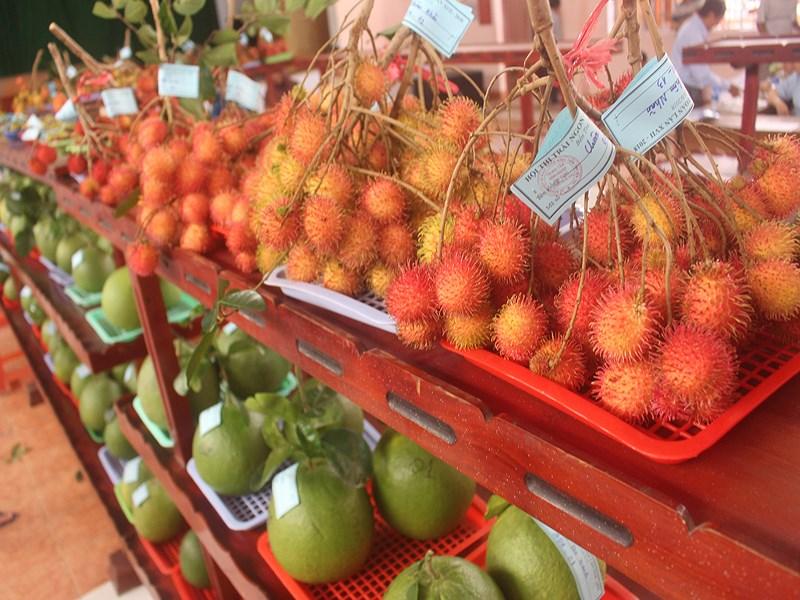Trái cây ngon tại lễ hội