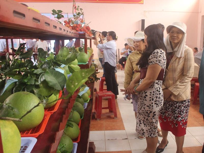 Khách tham quan khu trưng bày trái cây ngon