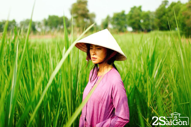 HAI PHUONG 5
