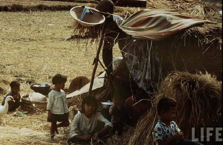 Một khu nhà tạm của những người nông dân mất nhà cửa do chiến tranh ở vùng nông thôn Sài Gòn.