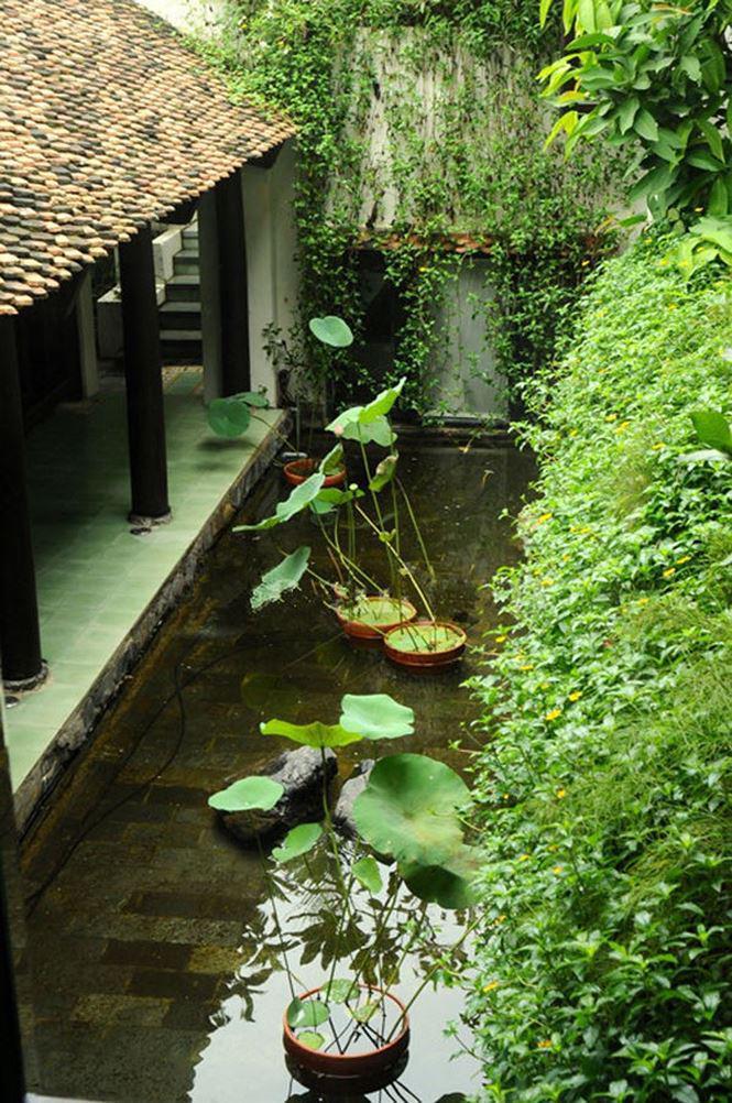 Ngôi nhà có tông màu trầm, kết hợp với cây cối tạo nên cảm giác yên bình, tĩnh lặng. Hình ảnh ao nước, sen đều rất quen thuộc.