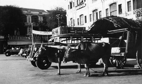 Đường Viénot ở Sài Gòn năm 1938-1939, nay là đường đường Phan Bội Châu. Ảnh tư liệu.