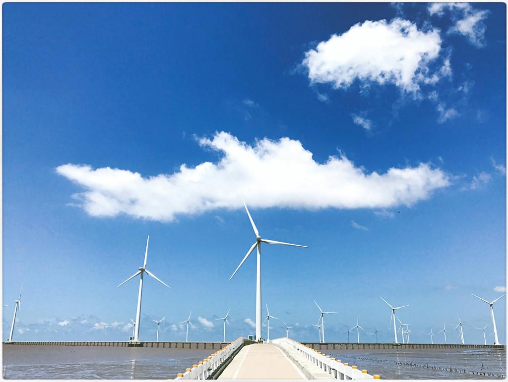 Cánh đồng quạt gió nhà máy điện Bạc Liêu.