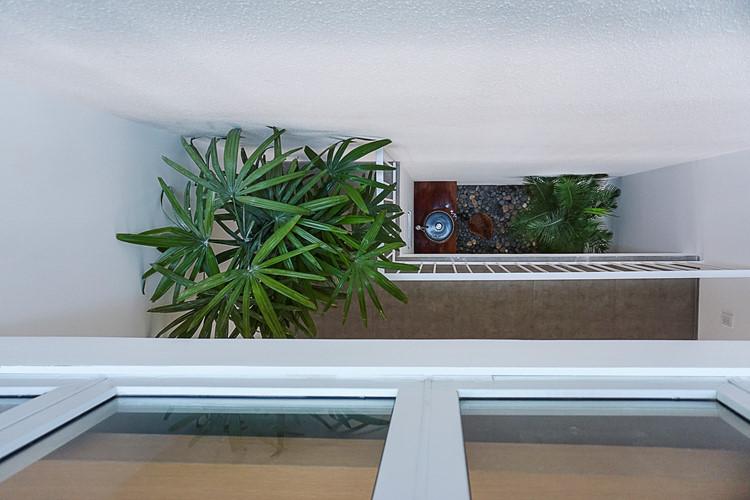 Dù chỉ vỏn vẹn 43m2 nhưng ngôi nhà vẫn có không gian riêng dành cho cây xanh.