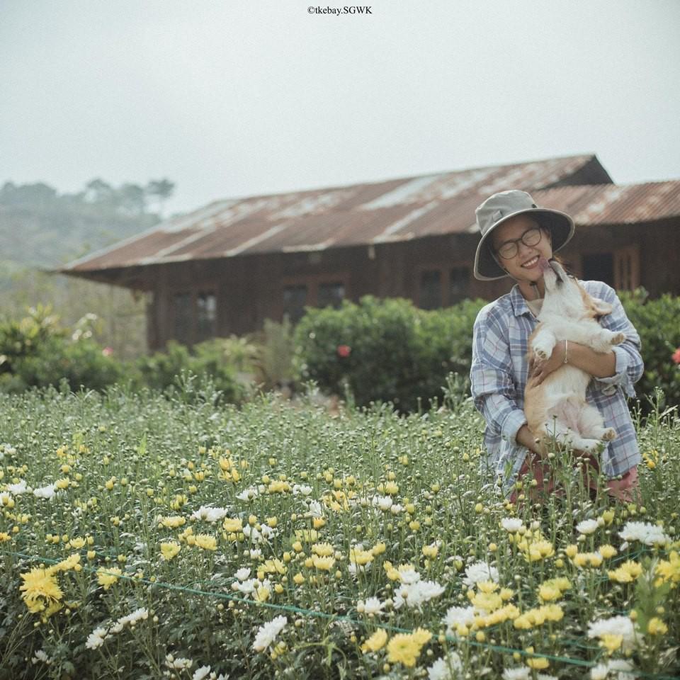 """""""Ở một nơi nào đó bình yên, bên nhau, trồng rau, nuôi gà, nuôi chó...""""n"""