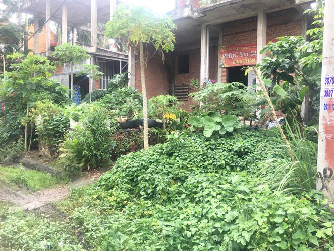Những căn biệt thự có giá hàng triệu USD bị bỏ hoang SƠN SƠN