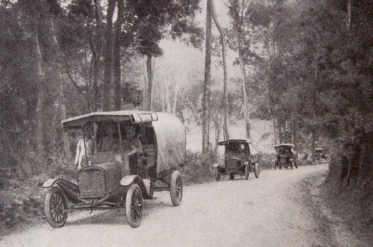 Các chủng loại xe được phân ra như sau: 7.479 xe ô tô con, 1.532 xe ô tô cỡ lớn, 1288 xe gắn máy. Hầu hết những chiếc xe lớn được sử dụng cho giao thông công cộng. Ảnh: Xe tải trên đường từ Krong Pha (Ninh Thuận) đến Đà Lạt.