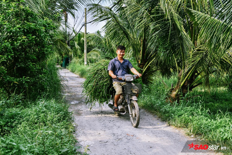 Nhiều gia đình nơi đây phải tận dụng đất đai để trồng lúa, trồng sen, nuôi cá, chăn bò, hay thậm chí hái rau ở đầm lầy… để duy trì thu nhập.