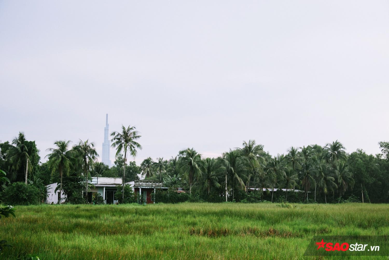Hơn 20 năm nay, Thanh Đa vẫn trơ trọi những bãi đất trống cây cỏ mọc mênh mông, và đầm lầy,… dù có vị trí địa lý đắc địa.