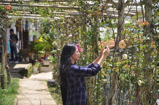 """Nơi đây có cả một vườn hoa lý tưởng để check-in """"sống ảo"""""""