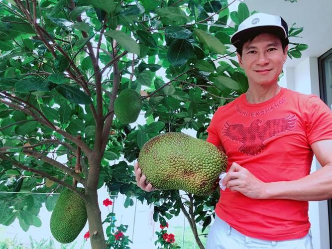 Ngoài rau còn có nhiều trái cây như mít, ổi, cóc... Ảnh: FB Ly Hai Minh Ha.