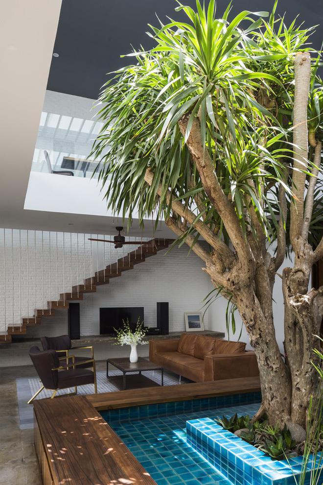 Tầng trệt, cây được trồng để làm khu vực ngăn cách chính giữa nhà ăn và phòng khách.