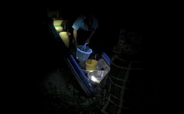 Trời tối như mực, phải rọi đèn pin lựa từng con cá THANH DŨNG