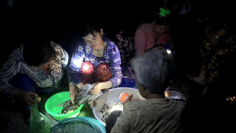 Vợ một ngư dân bày cá ra bán, người mua cầm đèn pin rọi lựa, người bán đeo đèn chóa trên đầu soi cá cho bạn hàng thấy rõ THANH DŨNG